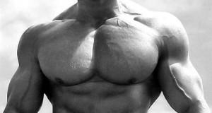 Накачанные грудные мышцы