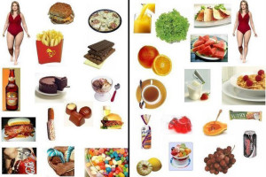 Фрукты сжигающие жиры в организме человека