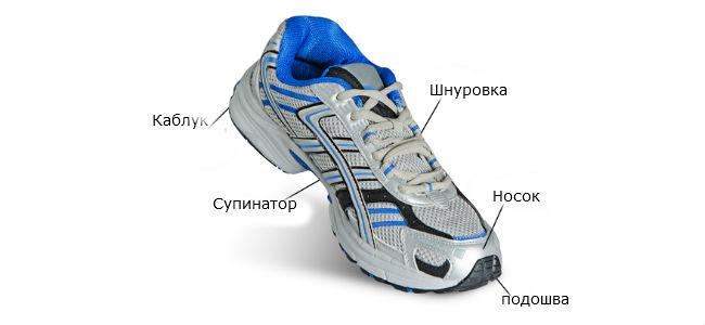 Критерии выбора беговых кроссовок