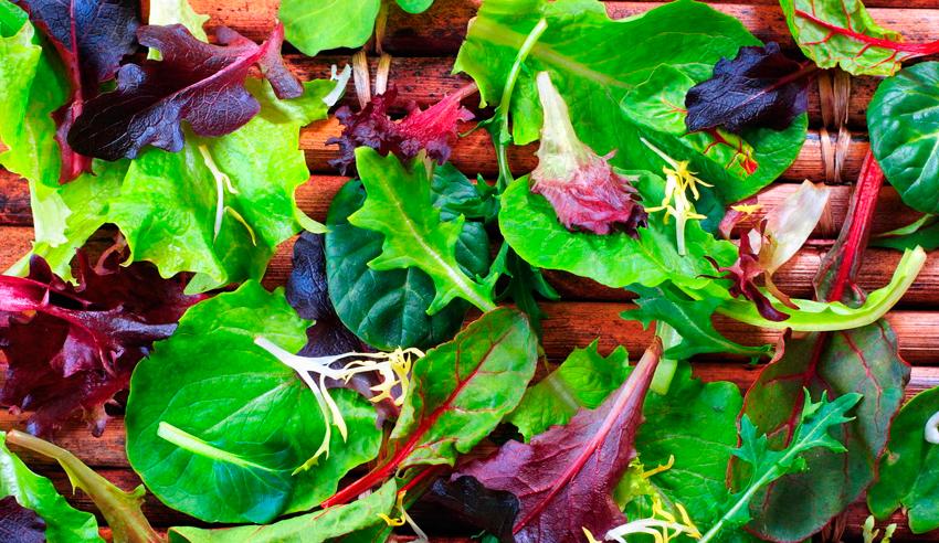 Зелень и салат