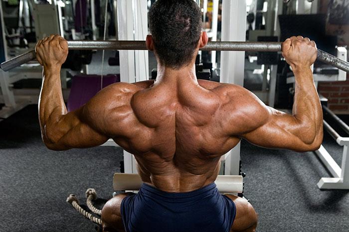 Трапеция со спины