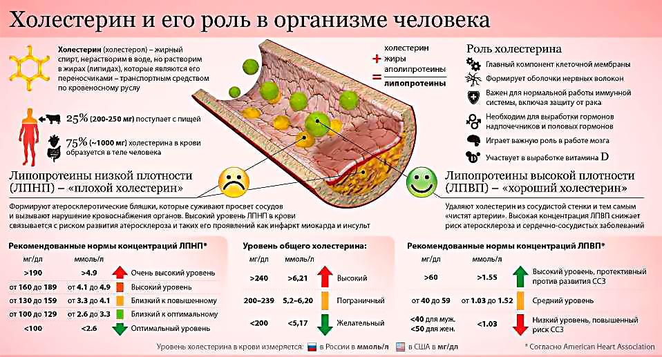 уровень лпнп холестерина