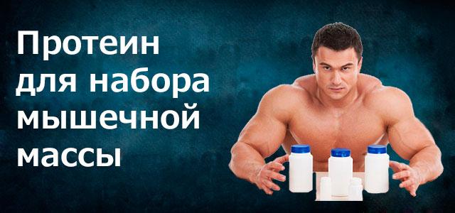 Протеины для набора мышечной массы в домашних условиях 888