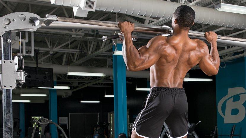 программы тренировки спины на массу