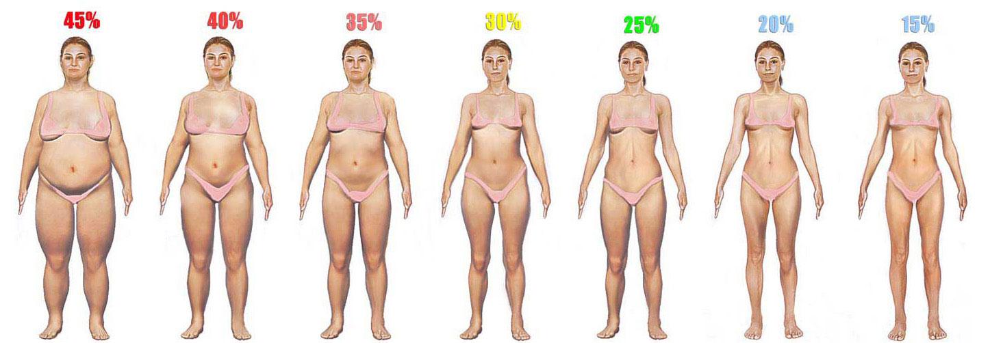 почему жир на животе и как убрать