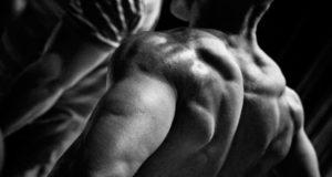 Накачанная спина