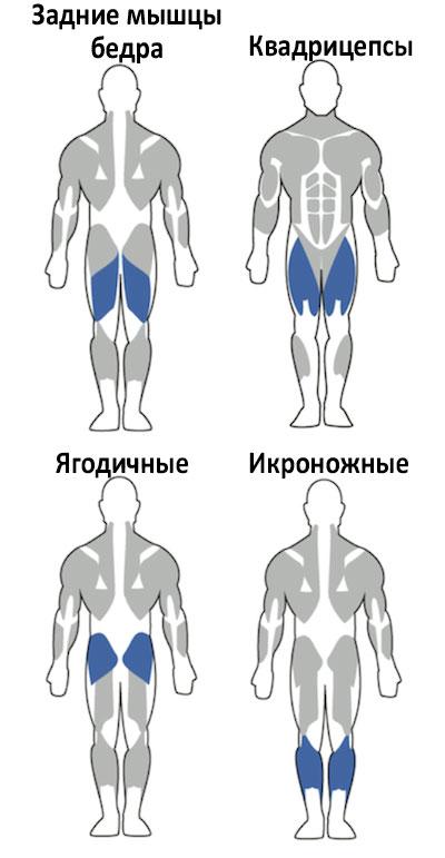Тренировка для похудения в тренажерном зале  упражнения