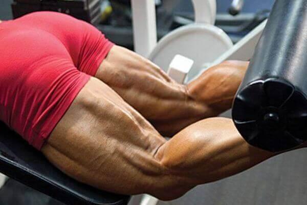 Мышцы задней поверхности бедра в сокращенном состоянии