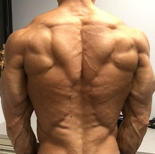 Рельефная спины