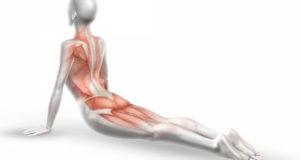 Болят суставы плеч как лечить - Всё о суставах