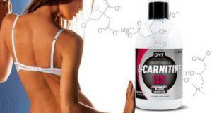 что такое l карнитин