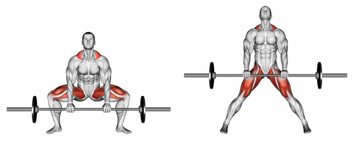 становая тяга сумо какие мышцы работают