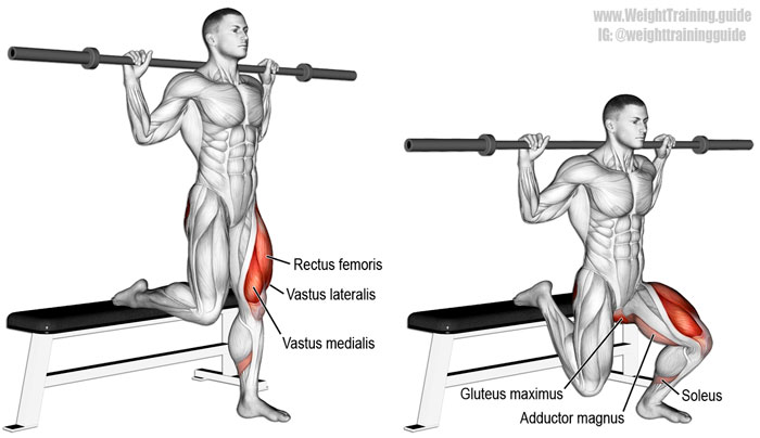 Мышцы, которые качаются в упражнении