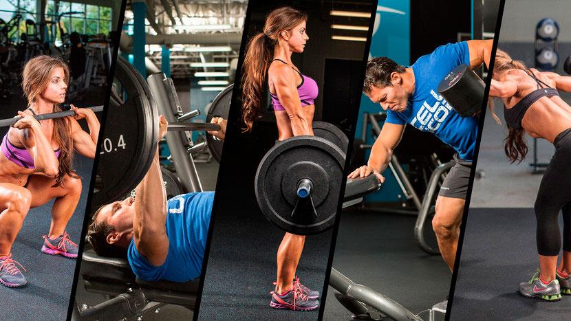 Упражнения для тренировки с разными типами телосложениями