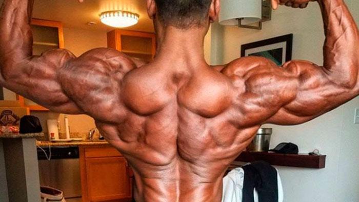 Анаболические стероиды - что это такое? Первый курс для новичка