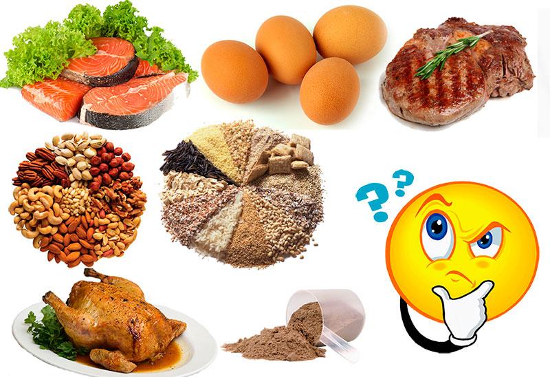 Процент белка в организме