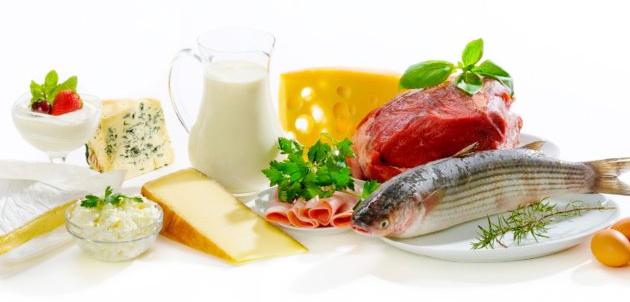 Продукты с наибольшим содержанием белков