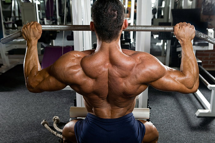 Трапеции список упражнений для трапециевидных мышц