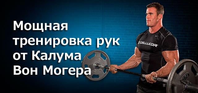 Программа для мышц рук