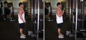 Упражнения на спину и бицепс в тренажерном зале для мужчин thumbnail