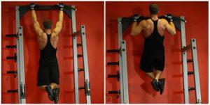 Составит себе упражнения на грудь и спину thumbnail