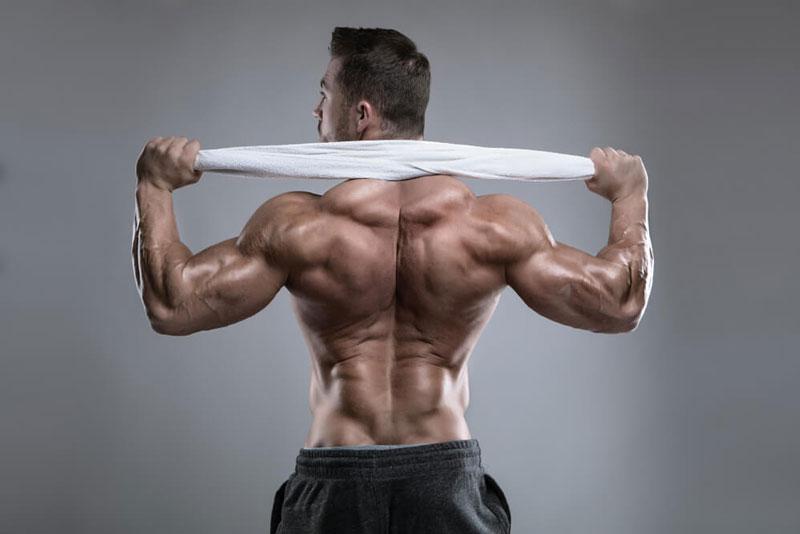 Тренировка трапециевидной мышцы
