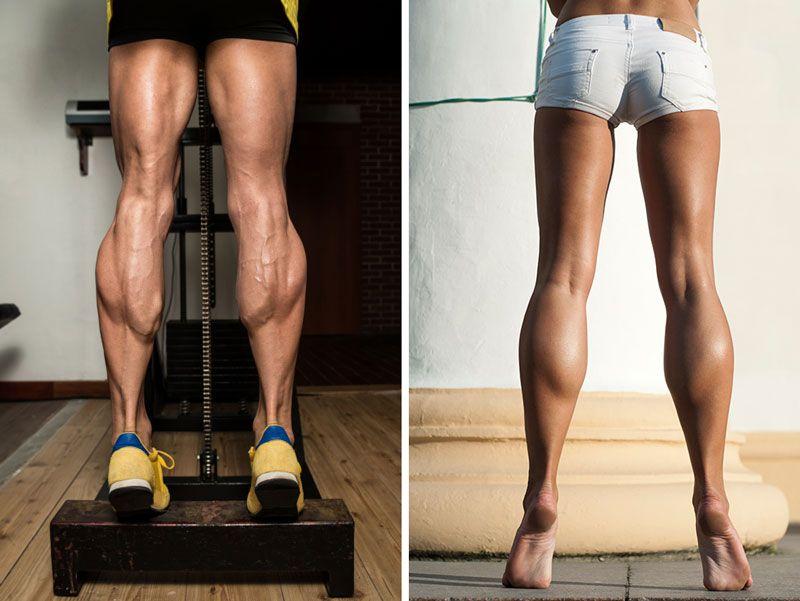 Как развить икроножные мышцы