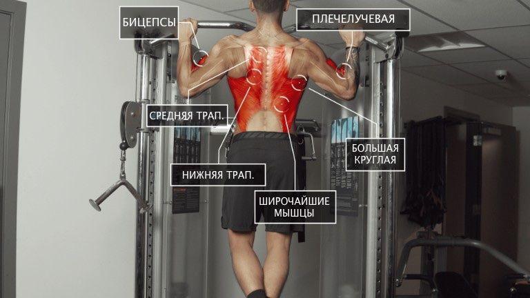 Подтягивание - лучше упражнение для прокачки мышц спины