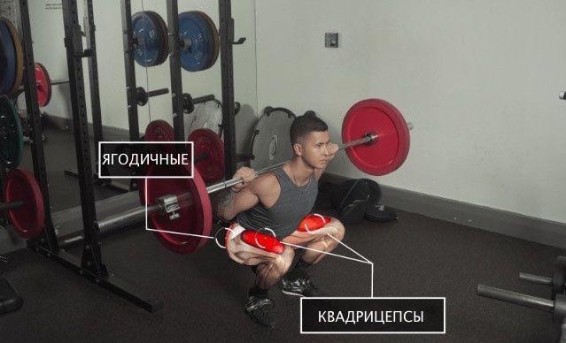 Приседания со штангой активируют ягодичные мышцы и квадрицепсы